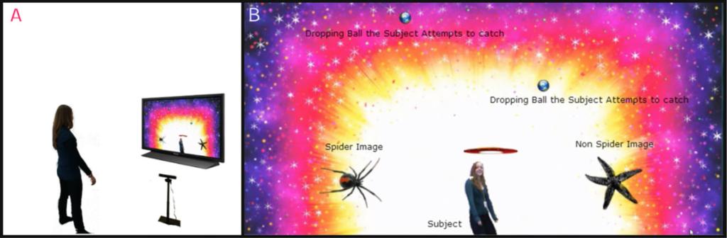 spiderfear